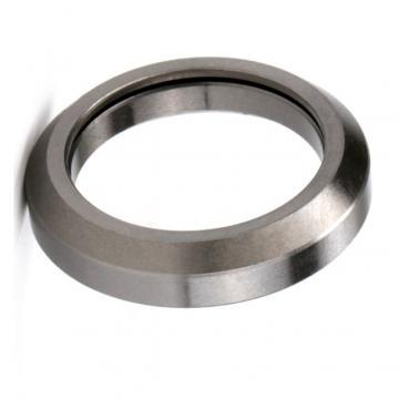 L Series 17*40*10 Magneto Bearings NSK L17 for Engraving Machine
