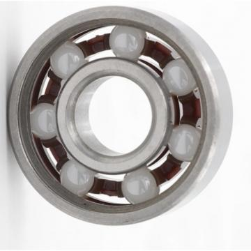 Waterproof sealed Zirconia Ceramic Ball Bearing 6302 Ceramic Bearing